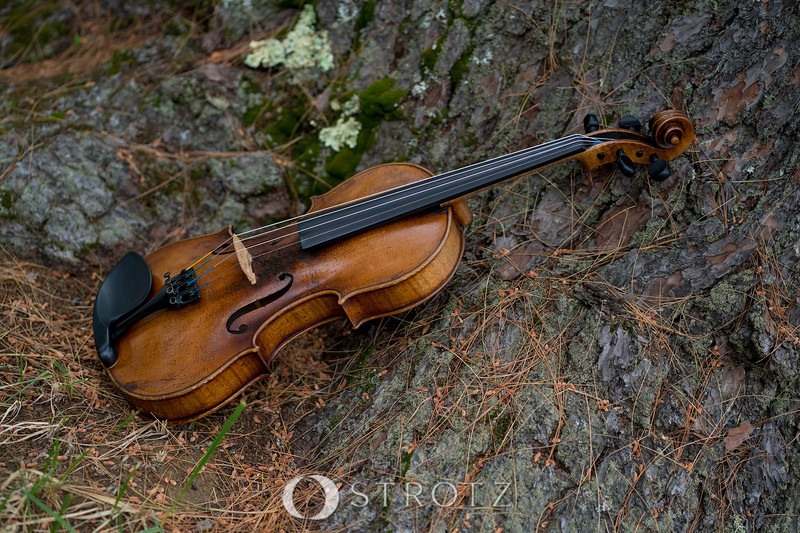 instruments_0303