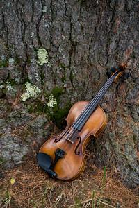 instruments_0302