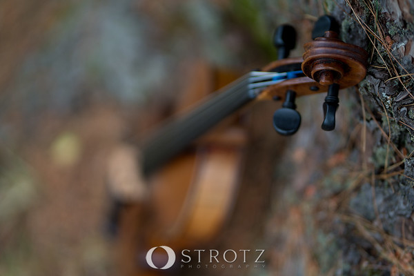 instruments_0305