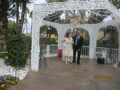 Lisa and Paul's Wedding Pictures  1/30/14