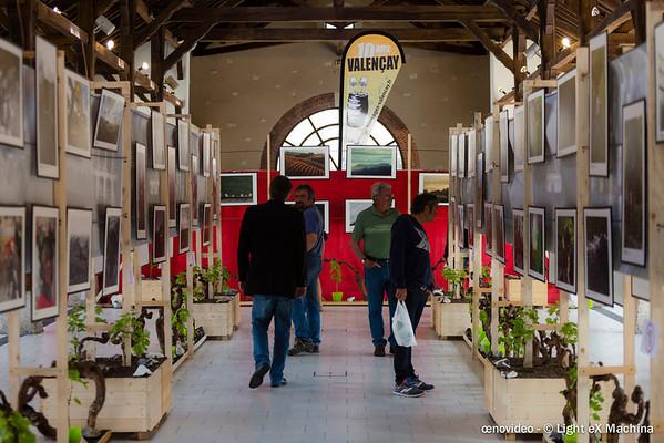 """Exposition """"Terroirs d'images"""" à la Halle au Blé"""