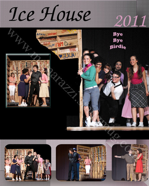 8 x 10 Layout<br /> from<br /> Performance<br /> Bye Bye Birdie