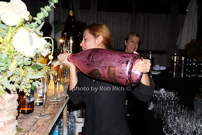 Ace of Spades photo by Rob Rich/SocietyAllure.com © 2016 robwayne1@aol.com 516-676-3939