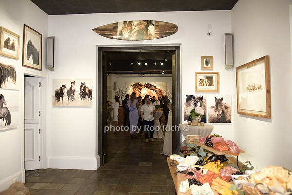 The Wild Horses of Sable Island Gallery in NYC<br /> photo by Rob Rich/SocietyAllure.com © 2015 robwayne1@aol.com 516-676-3939