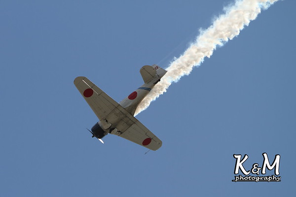 Wings Over Houston Airshow