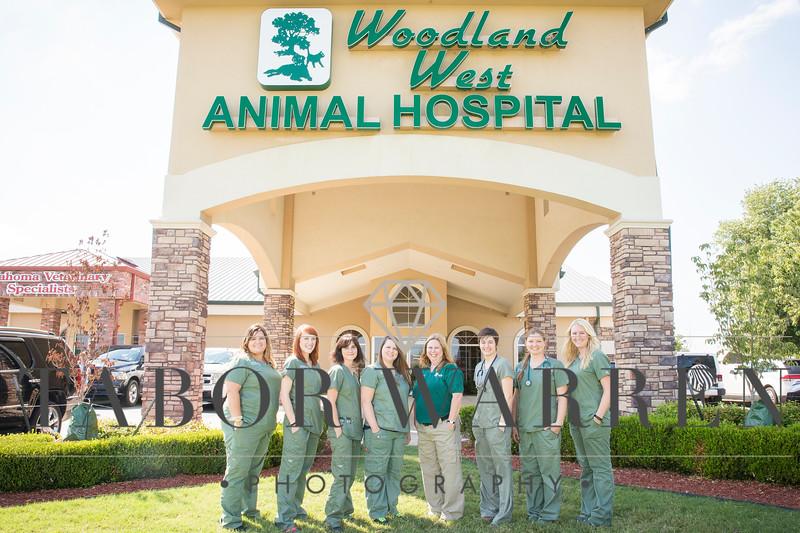 Woodland West 06