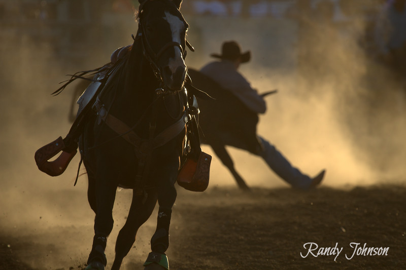 Yamhill County Fair and Rodeo.