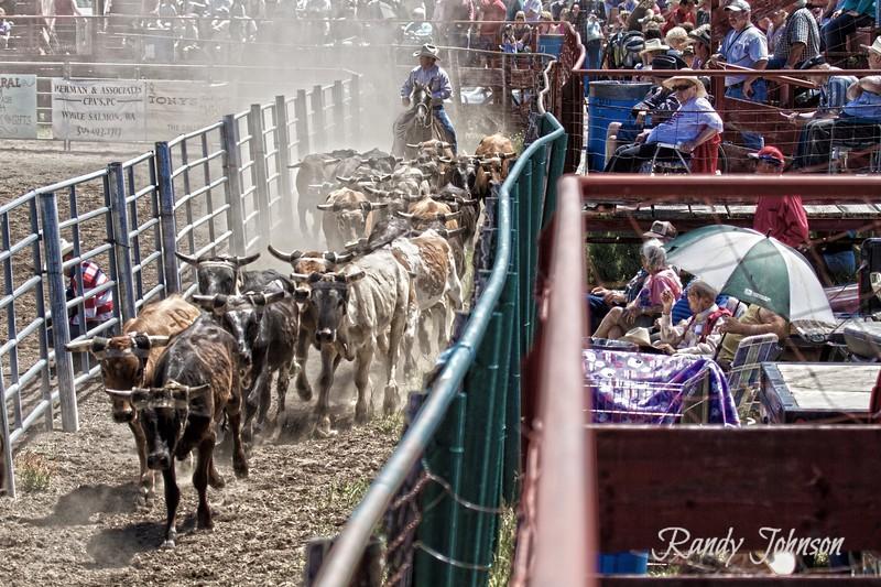 2012 Ketchum Kalf Rodeo