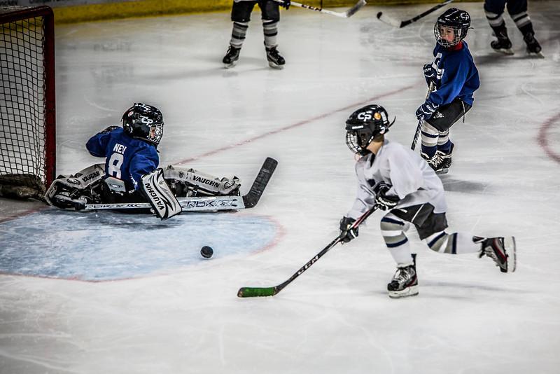 2014-03-02 (Rebels Hockey)