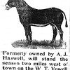 "While it may seem a little odd to us that someone would advertise a<br /> stud service, ranching and farming were tremendously important in<br /> places like Oklahoma in 1906. Of course, this also explains Mr.<br /> McDaniel's ad for ""Young Henry."""