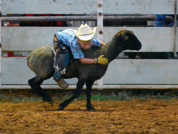Noble Open Rodeo