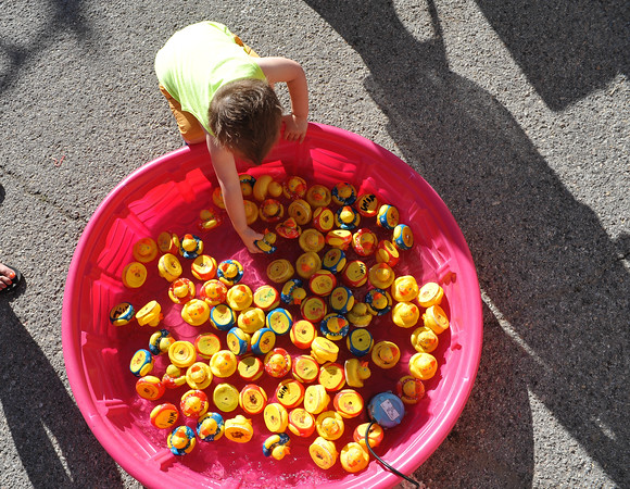 Royce Hartwig picks a prize from a pool of toy ducks,Saturday, April 23, 2016, during the Lions Club Carnival. (Kyle Phillips / The Transcript)