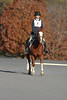 #04 Moments of Brilliance and Mady at The Flying Cross Mini Horse Trial. 11.12.2011