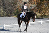 #13 Bellatrix and Conor at The Flying Cross Mini Horse Trial. 11.12.2011
