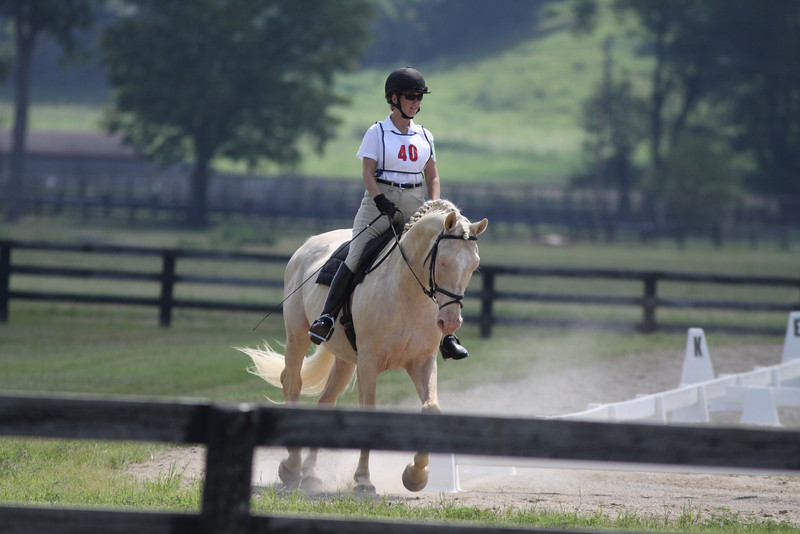 Harley with Kim Smith at Stone Place Stables Mini Trial 07.31.2011.