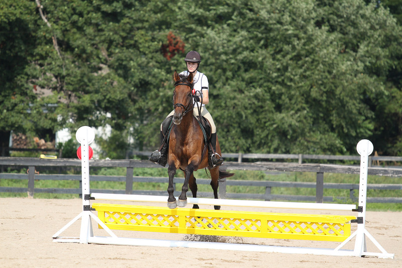 Fuji with Erica Mitchell at Stone Place Stables Mini Trial 07.31.2011.