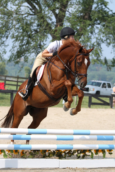 Cash Me In with Bonnie Watkins at Stone Place Stables Mini Trial 07.31.2011.