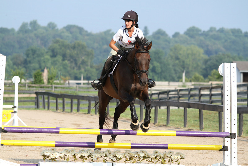Amigo with Rachel Sketo at Stone Place Stables Mini Trial 07.31.2011.