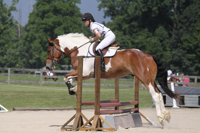 Talladega Knight with Julie Levandoski up at The Lands End Farm Mini Horse Trial. 07.10.2011