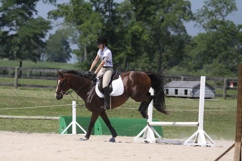 Junior Mint with Lauren Carlisle up at The Lands End Farm Mini Horse Trial. 07.10.2011