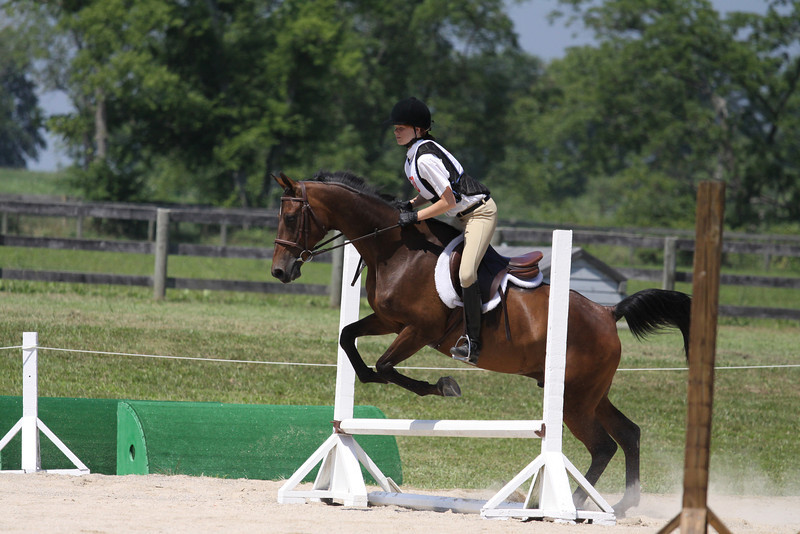 Little Romeo with Rachel Romberg up at The Lands End Farm Mini Horse Trial. 07.10.2011