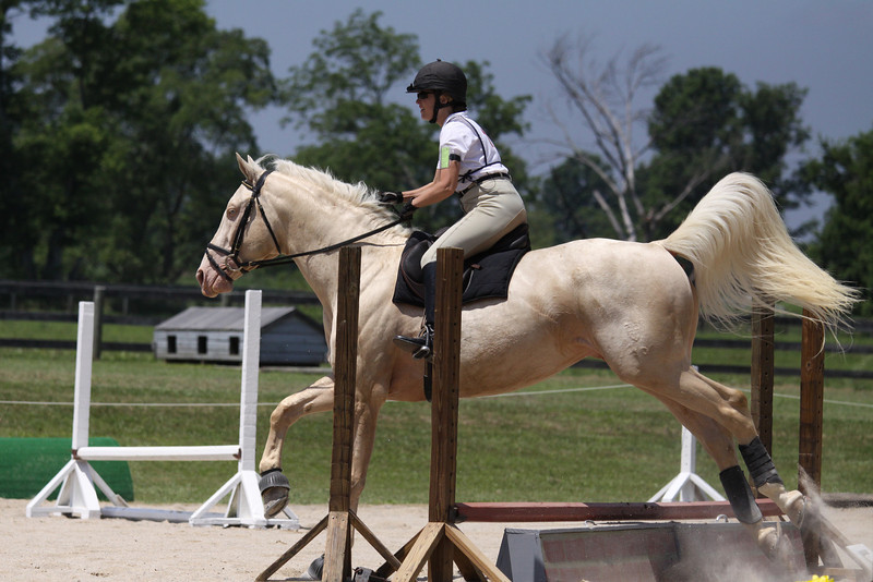 Harley with Kim Smith up at The Lands End Farm Mini Horse Trial. 07.10.2011