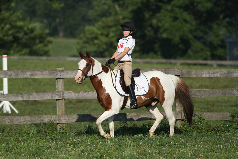 Look Out Scout with Victoria Turbyfill up at The Lands End Farm Mini Horse Trial. 07.10.2011