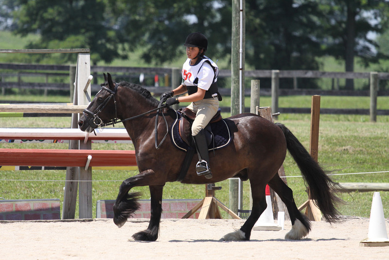 Midnight KL with Laurel Hall up at The Lands End Farm Mini Horse Trial. 07.10.2011