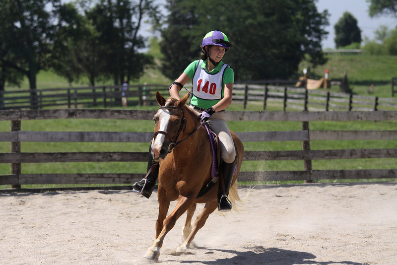 Mego Fast too with Shelby England up at The Lands End Farm Mini Horse Trial. 07.10.2011
