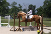 Poco's Golden Prospect with Abbie Binzer up at The Lands End Farm Mini Horse Trial. 07.10.2011