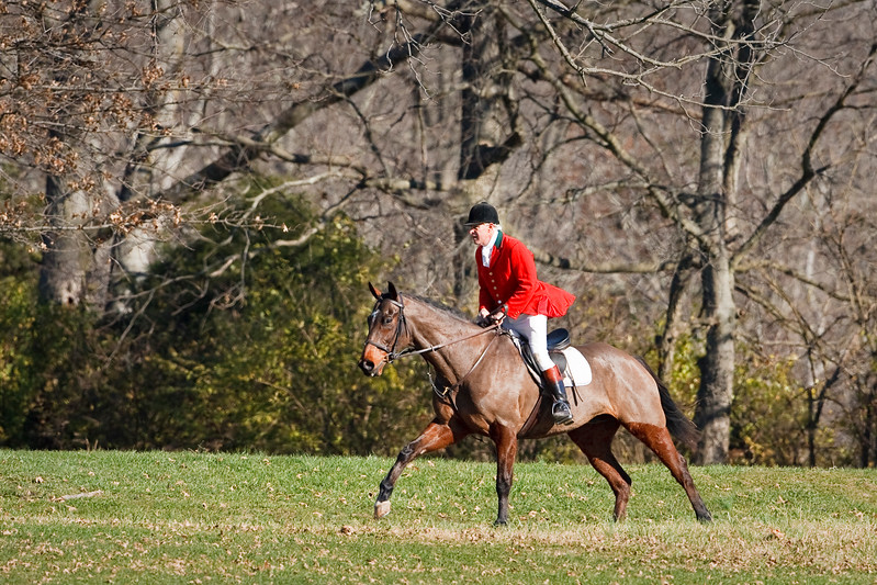 Shakertown Fox Hunting