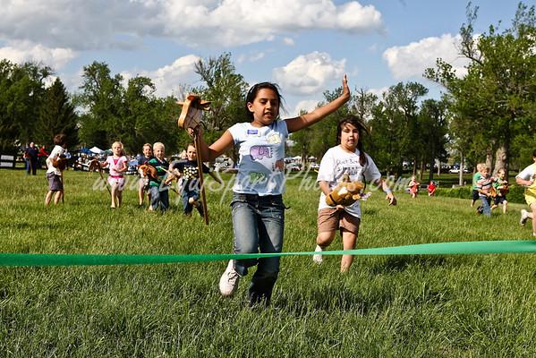 High Hope Steeplechase 2008