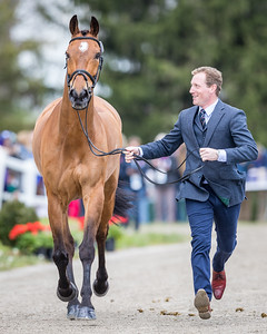 Oliver Townend and Cooley Master Class at the first inspection at the Land Rover Ky. 3-Day Event 4.25.18.