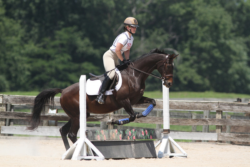 Classic Robert with Stephanie Wuest up at The Lands End Farm Mini Horse Trial. 07.10.2011
