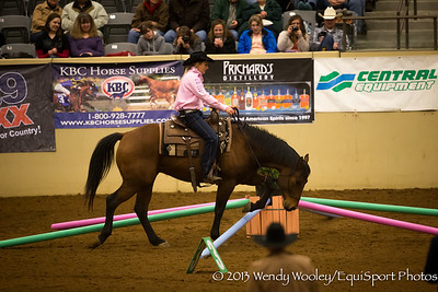 Sarah Winters, one of the competitors for The Road To The Horse on 3.17.2013 at the Kentucky Horse Park