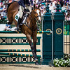 Panda Christie and Little Leo in the Stadium Jumping portion of the Rolex 3-Day Event at the Ky. Horse Park 5.01.16.