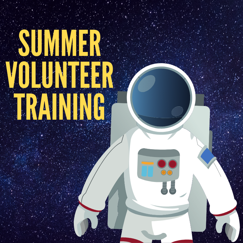 summer volunteer training