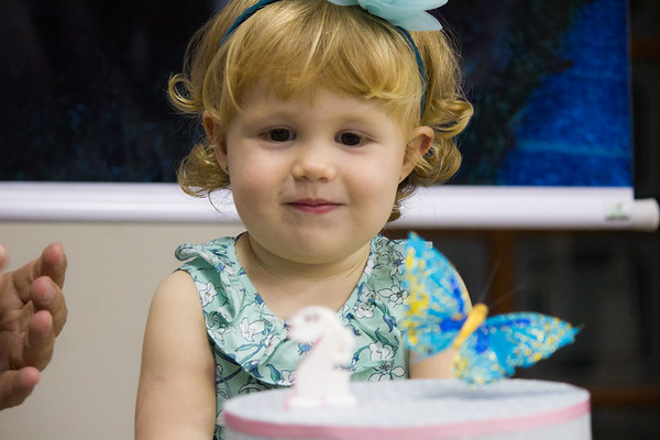 Aniversário Sophia