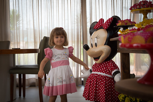 Aniversário Alice 3 anos