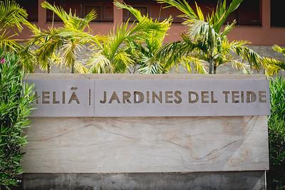 MELÍA JARDINES DEL TEIDE Novedades