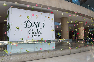 Dallas Symphony Gala 2017
