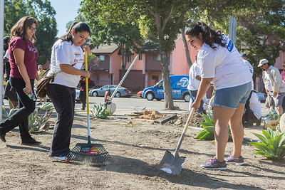 DAY OF SERVICE (WATTS)