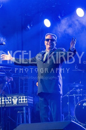 MADNESS - Live at Uttoxeter Racecourse