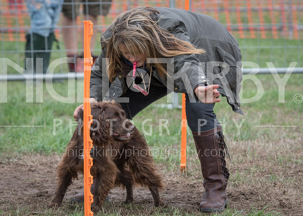 Cheshire Game & Country Fair 2018