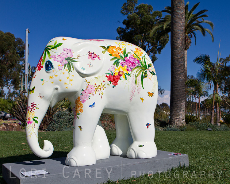 Elephant Parade: Welcome to America<br /> Maa Lii by Chris Chun<br /> Dana Point, California, USA<br /> <br /> Elephant Parade is an open air art exhibition designed to raise public awareness and support for the cause of elephant conservation. Making their first US appearance thirty life-sized baby elephants will be on display throughout Dana Point from August 23 through November 7 2013.