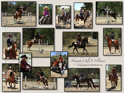 YLHorseshow6 29 14-wm