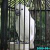 WJB__2009_09_02_0093