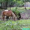 WJB__2009_09_02_0254