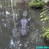 WJB__2009_09_02_0067