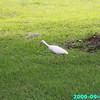 WJB__2009_09_02_0033